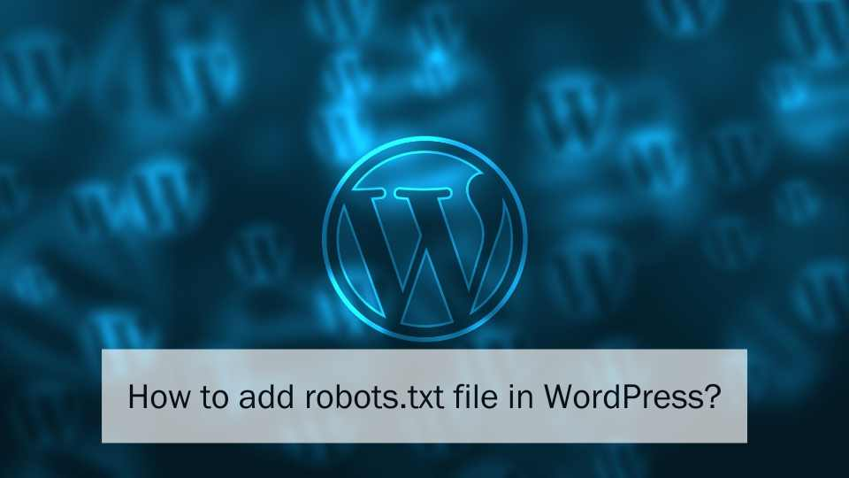 robots.txt file in WordPress